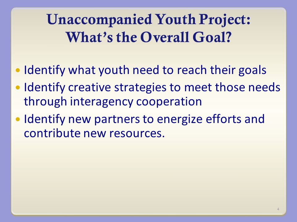 Unaccompanied Youth Project: What's the Overall Goal.