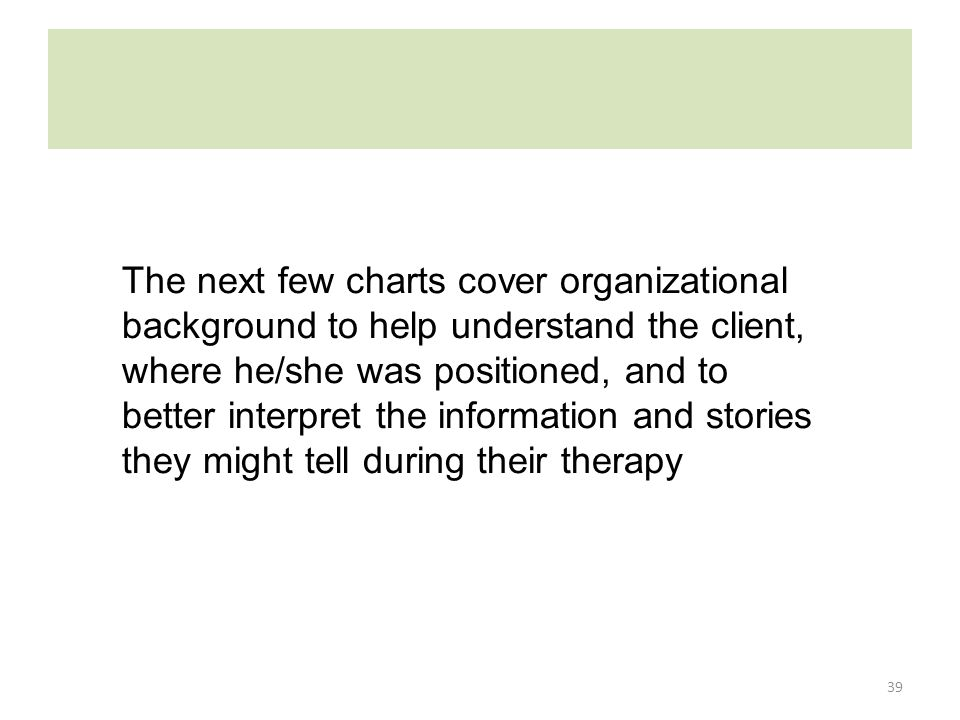 39 The next few charts cover organizational background to help understand the client, where he/she was positioned, and to better interpret the informa