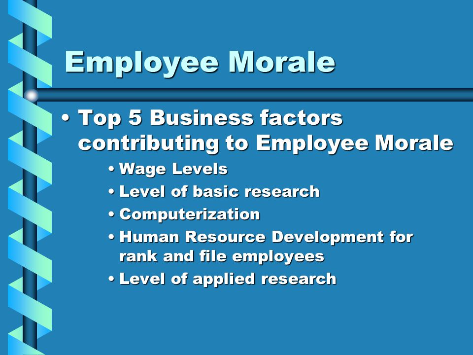 Employee Morale Top 5 Business factors contributing to Employee MoraleTop 5 Business factors contributing to Employee Morale Wage LevelsWage Levels Level of basic researchLevel of basic research ComputerizationComputerization Human Resource Development for rank and file employeesHuman Resource Development for rank and file employees Level of applied researchLevel of applied research