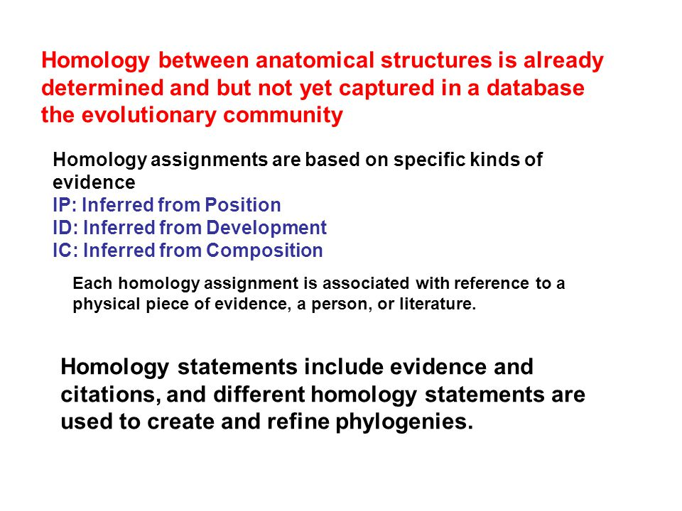 Each homology assignment is associated with reference to a physical piece of evidence, a person, or literature. Homology assignments are based on spec