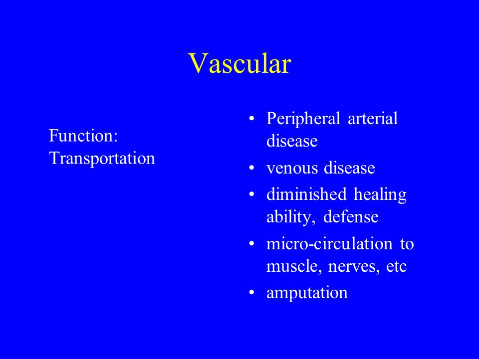 Vascular Peripheral arterial disease venous disease diminished healing ability, defense micro-circulation to muscle, nerves, etc amputation Function: Transportation