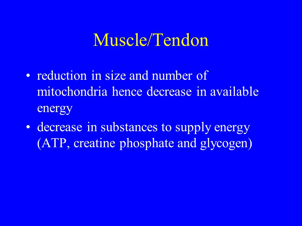 Muscle/Tendon reduction in size and number of mitochondria hence decrease in available energy decrease in substances to supply energy (ATP, creatine phosphate and glycogen)