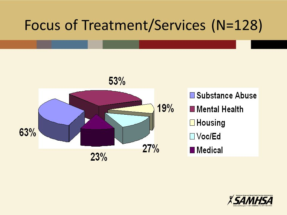 Focus of Treatment/Services (N=128)