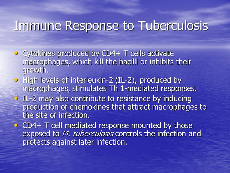 Immune Response to Tuberculosis Cytokines produced by CD4+ T cells activate macrophages, which kill the bacilli or inhibits their growth.