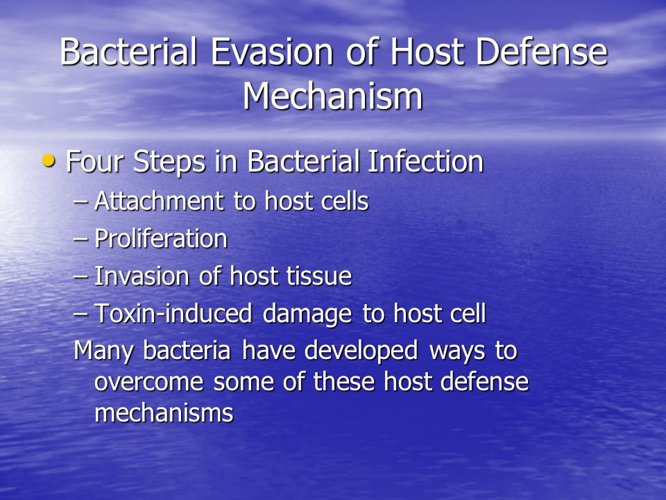 Bacterial Evasion of Host Defense Mechanism Four Steps in Bacterial Infection Four Steps in Bacterial Infection –Attachment to host cells –Proliferation –Invasion of host tissue –Toxin-induced damage to host cell Many bacteria have developed ways to overcome some of these host defense mechanisms