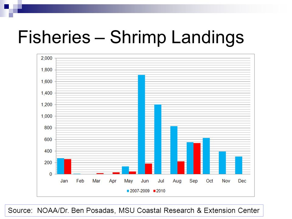 Fisheries – Shrimp Landings Source: NOAA/Dr. Ben Posadas, MSU Coastal Research & Extension Center