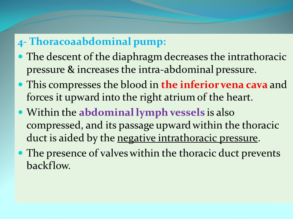 4- Thoracoaabdominal pump: The descent of the diaphragm decreases the intrathoracic pressure & increases the intra-abdominal pressure. This compresses
