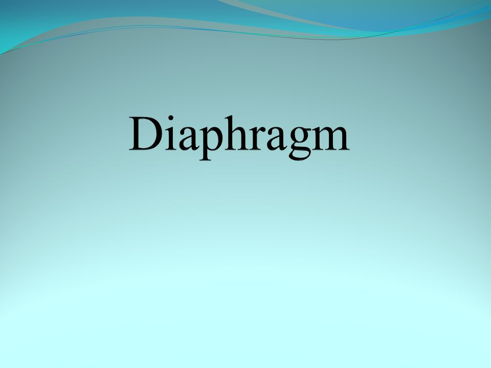 Objectives  Discuss the origin and insertion of diaphragm.