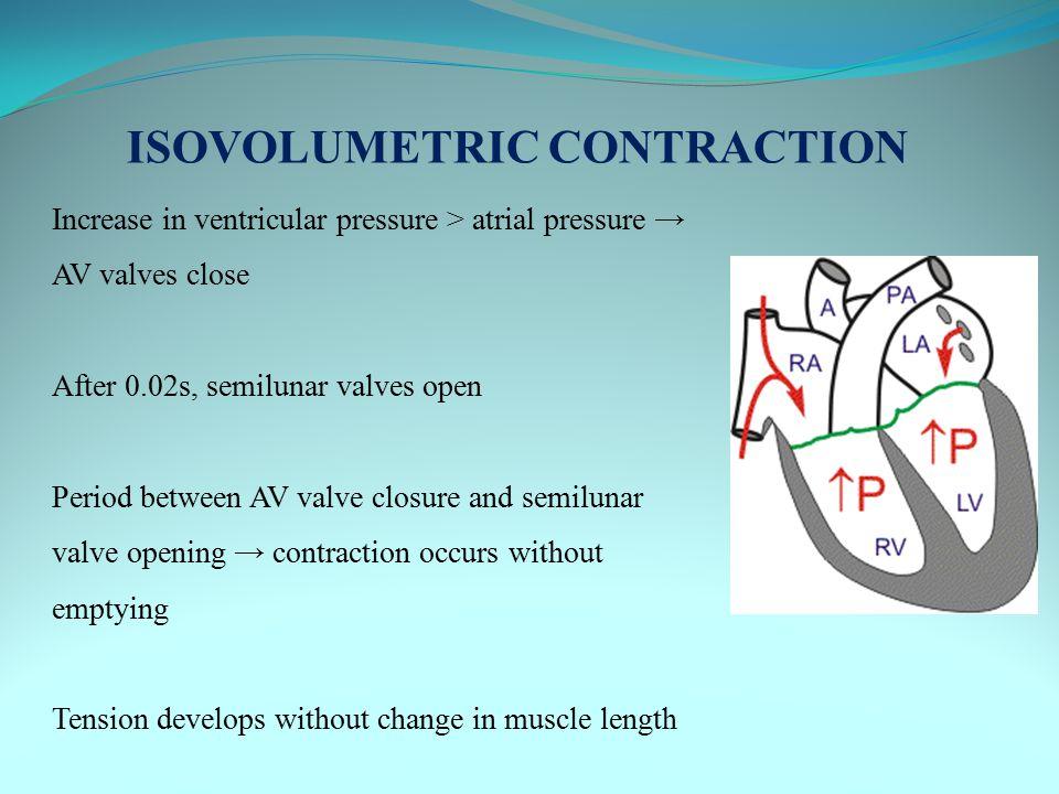 ISOVOLUMETRIC CONTRACTION Increase in ventricular pressure > atrial pressure → AV valves close After 0.02s, semilunar valves open Period between AV va
