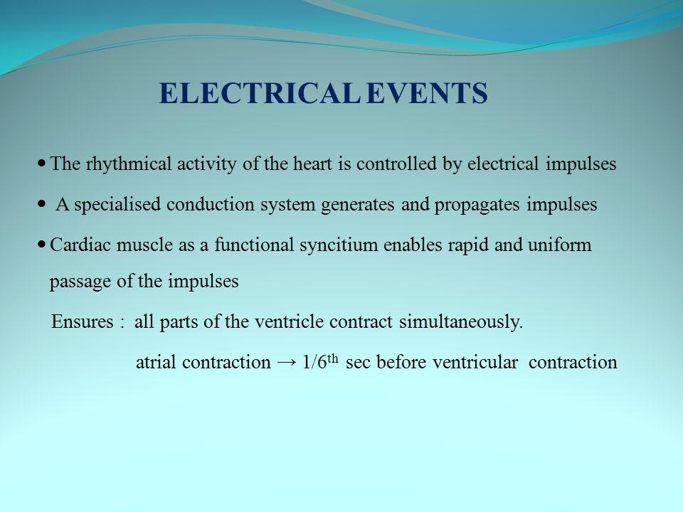 Effect of autonomic nervous system on conduction