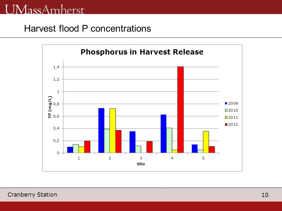 10 Cranberry Station Harvest flood P concentrations