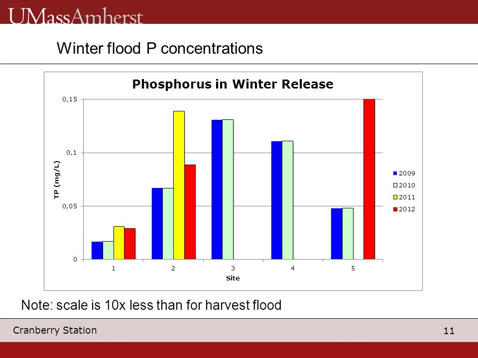 11 Cranberry Station Winter flood P concentrations Note: scale is 10x less than for harvest flood