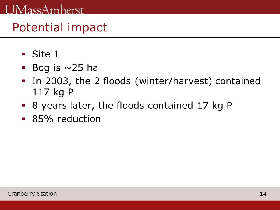 14 Cranberry Station Potential impact  Site 1  Bog is ~25 ha  In 2003, the 2 floods (winter/harvest) contained 117 kg P  8 years later, the floods