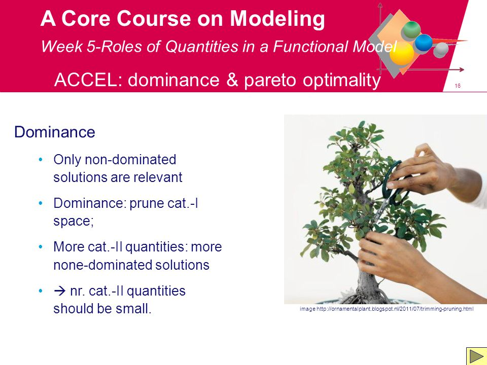 16 A Core Course on Modeling Week 5-Roles of Quantities in a Functional Model ACCEL: dominance & pareto optimality image http://ornamentalplant.blogspot.nl/2011/07/trimming-pruning.html Dominance Only non-dominated solutions are relevant Dominance: prune cat.-I space; More cat.-II quantities: more none-dominated solutions  nr.