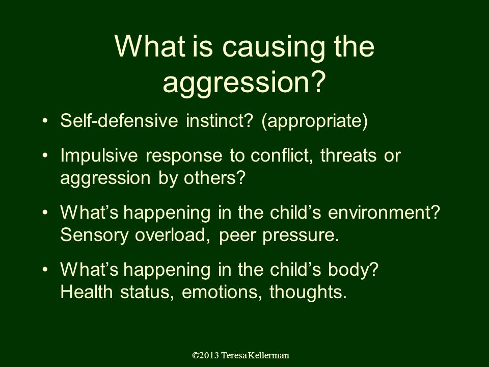 ©2013 Teresa Kellerman What is causing the aggression.