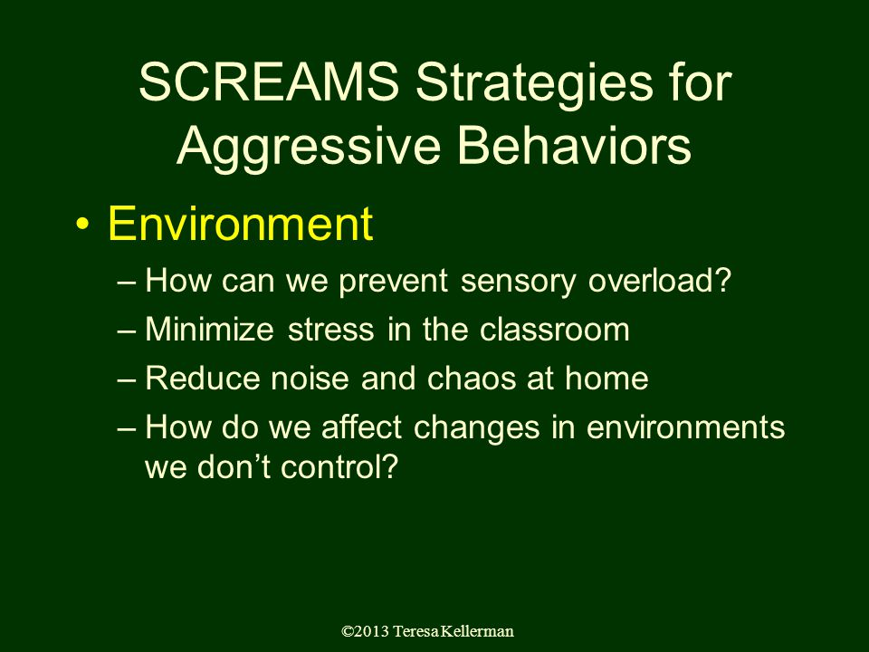 ©2013 Teresa Kellerman SCREAMS Strategies for Aggressive Behaviors Environment –How can we prevent sensory overload.
