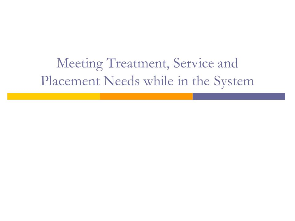Meeting Treatment, Service and Placement Needs while in the System