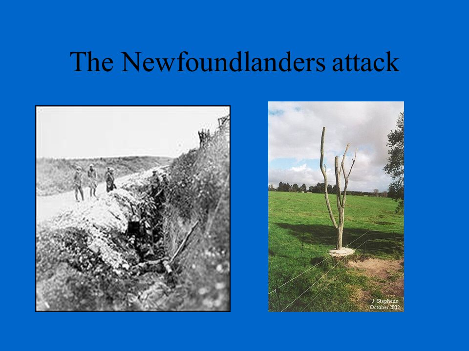 The Newfoundlanders attack