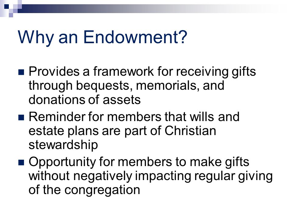 Why an Endowment.