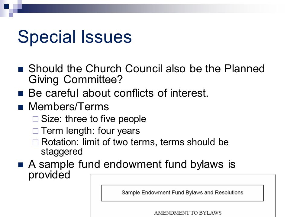 Special Issues Should the Church Council also be the Planned Giving Committee? Be careful about conflicts of interest. Members/Terms  Size: three to