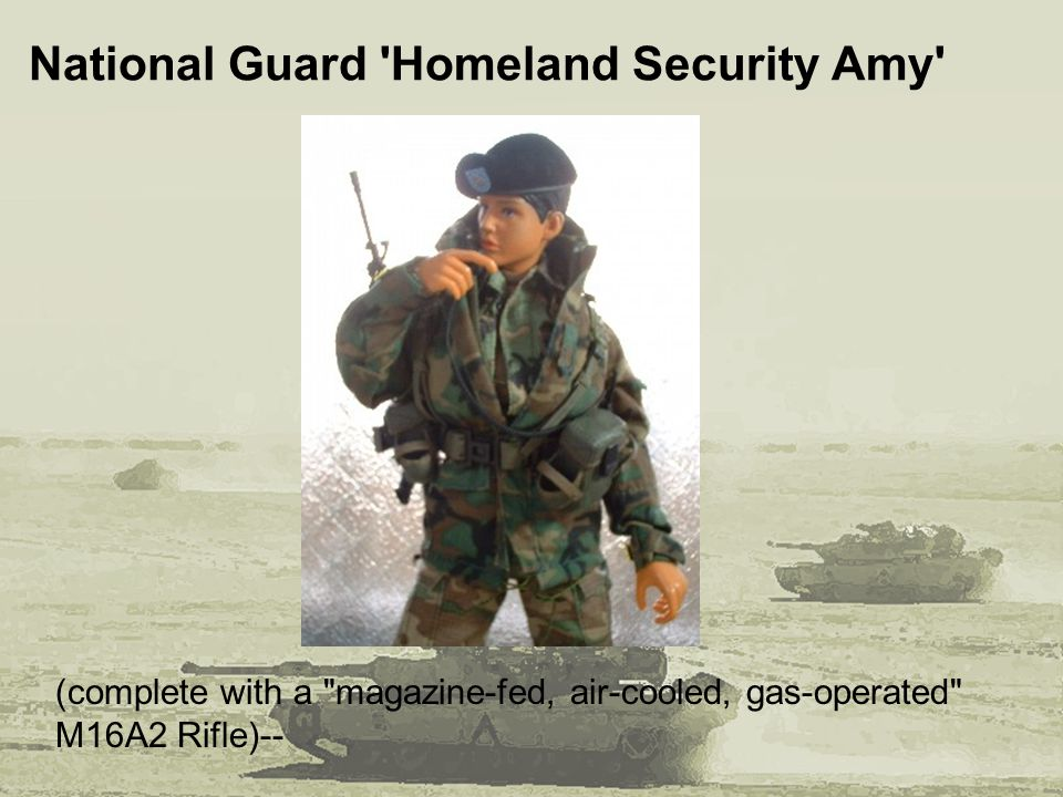 National Guard Homeland Security Amy (complete with a magazine-fed, air-cooled, gas-operated M16A2 Rifle)--