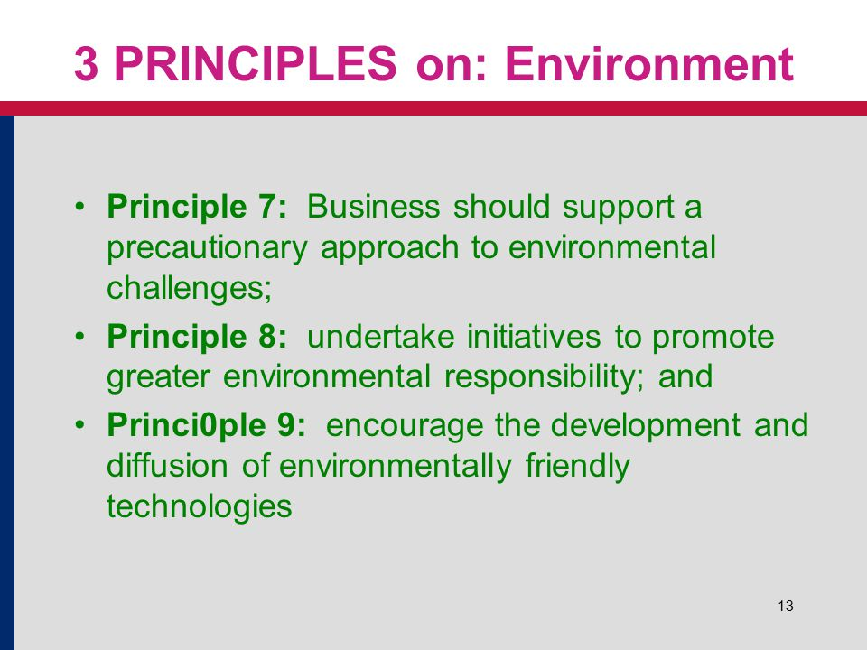 13 3 PRINCIPLES on: Environment Principle 7: Business should support a precautionary approach to environmental challenges; Principle 8: undertake init