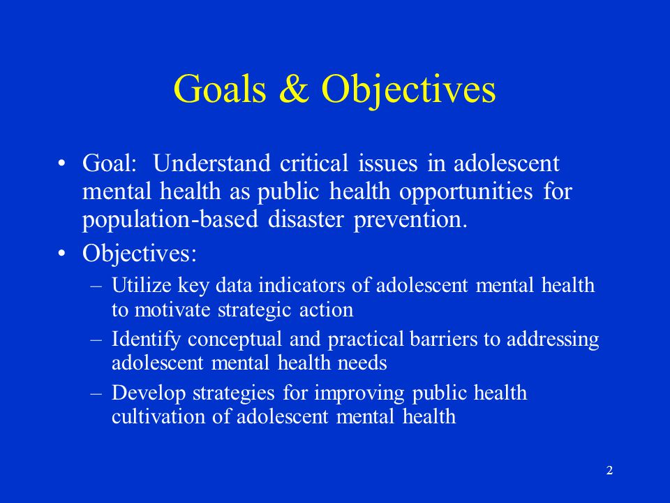 2 Goals & Objectives Goal: Understand critical issues in adolescent mental health as public health opportunities for population-based disaster prevention.