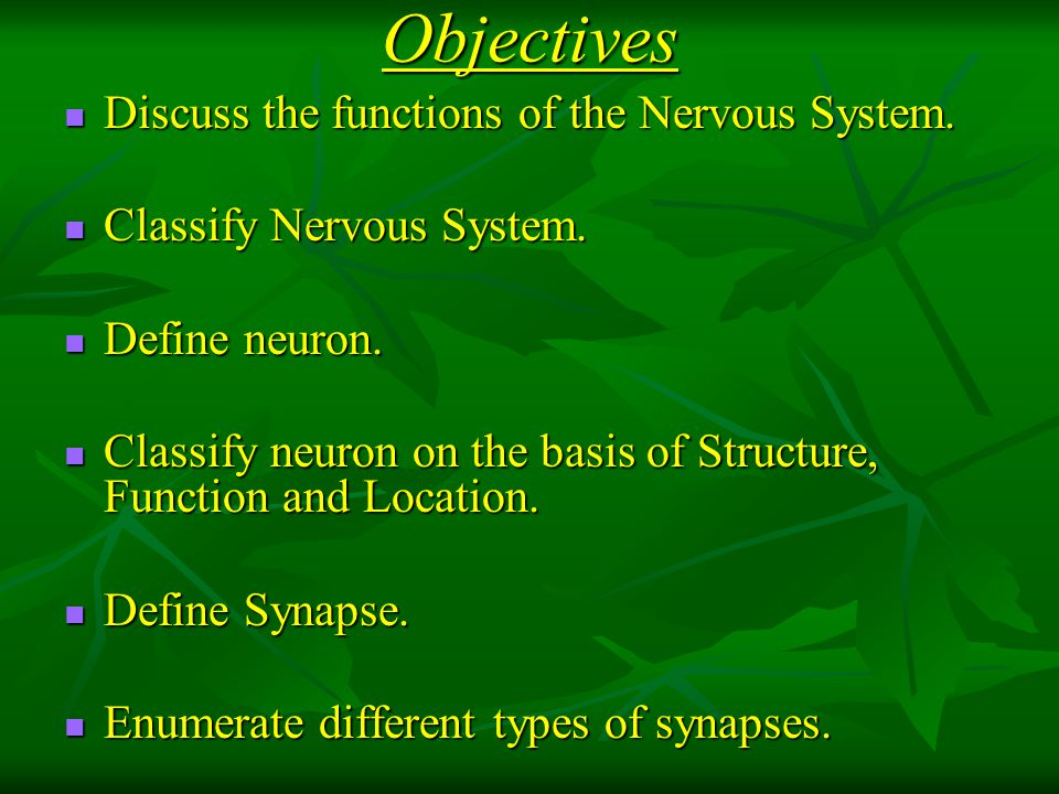 Objectives Discuss the functions of the Nervous System.