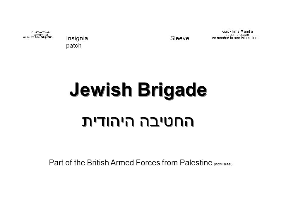 Jewish Brigade החטיבה היהודית Part of the British Armed Forces from Palestine (now Israel) Insignia Sleeve patch