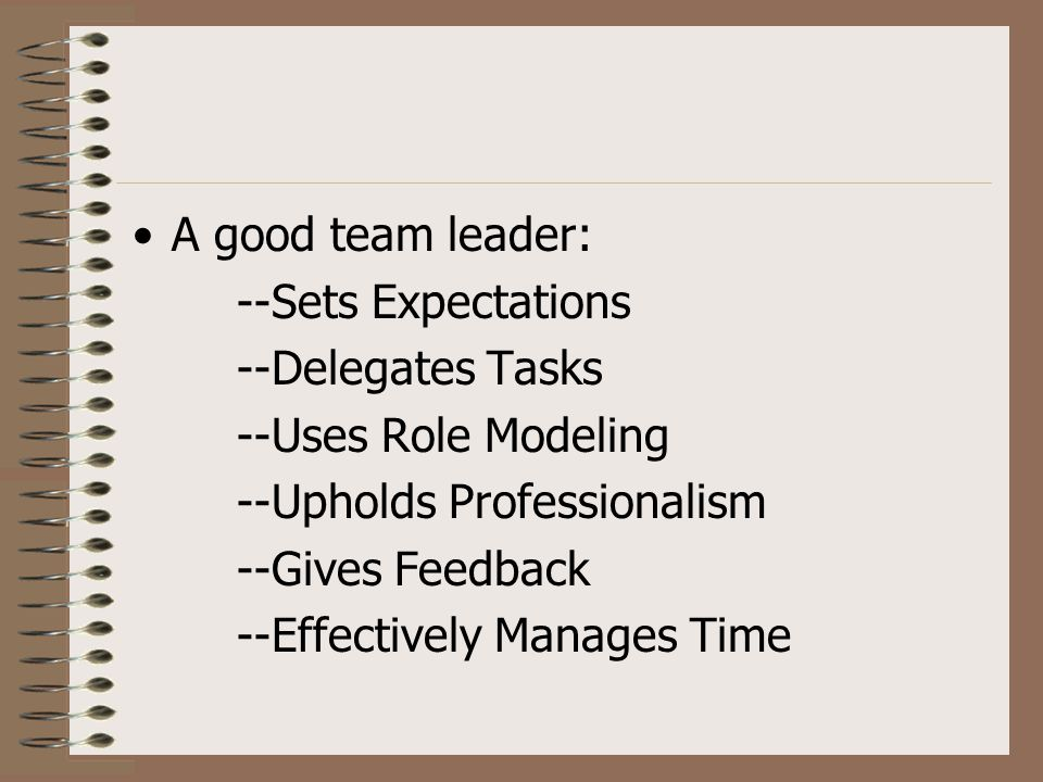Professionalism Therefore, being a team leader also means upholding professionalism.