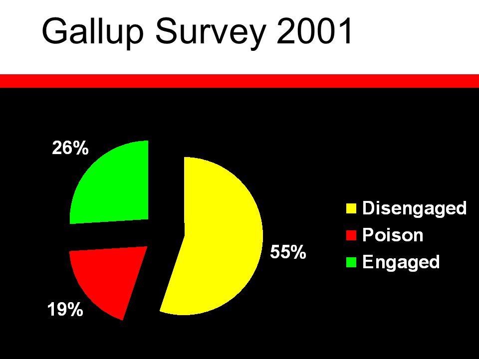 Gallup Survey 2001