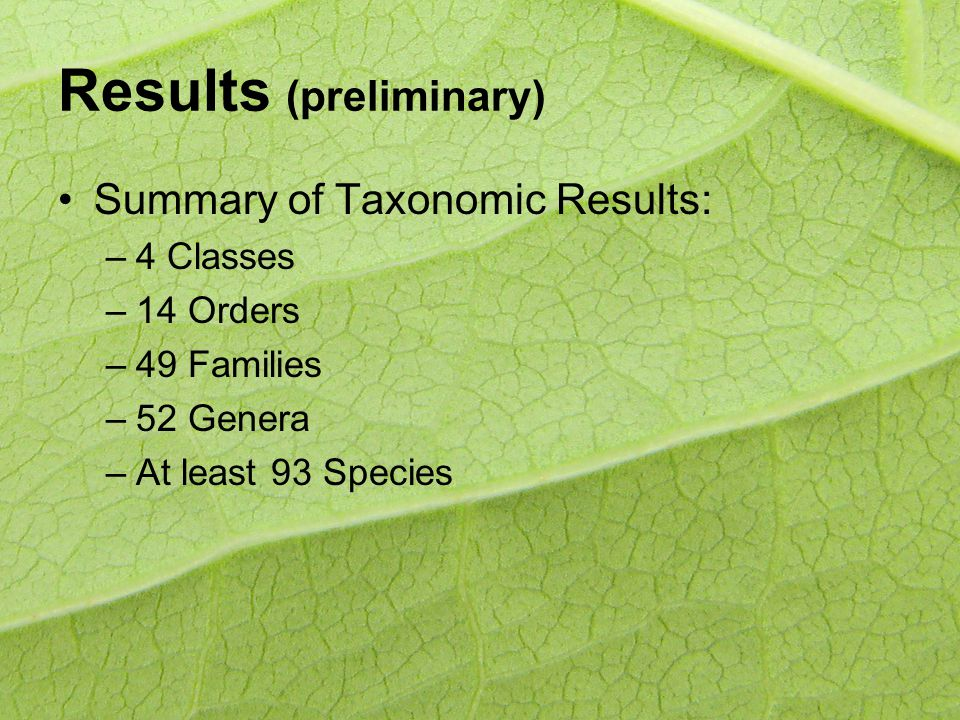 Results (preliminary) Summary of Taxonomic Results: –4 Classes –14 Orders –49 Families –52 Genera –At least 93 Species