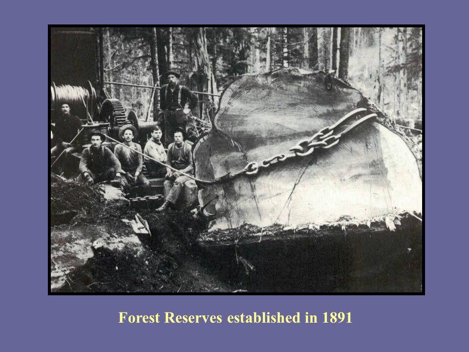 Forest Reserves established in 1891