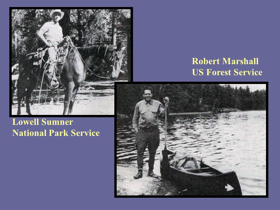 Robert Marshall US Forest Service Lowell Sumner National Park Service