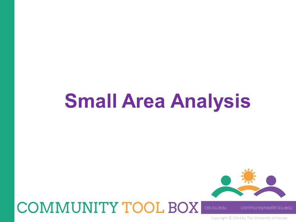 Copyright © 2014 by The University of Kansas Small Area Analysis