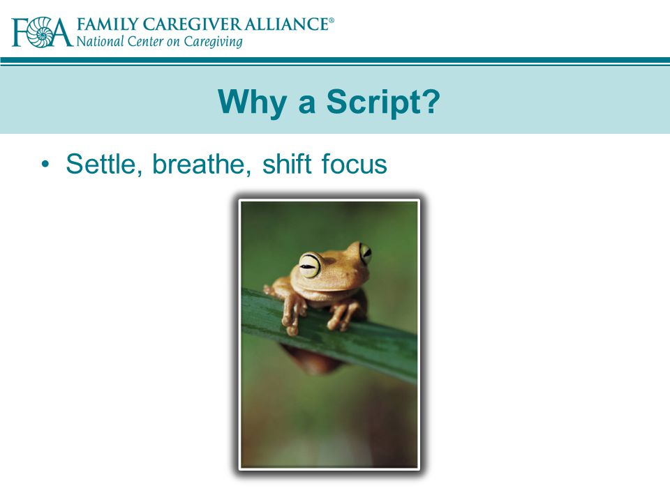 Why a Script Settle, breathe, shift focus