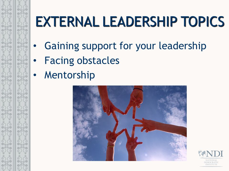 EXTERNAL LEADERSHIP TOPICS Gaining support for your leadership Facing obstacles Mentorship