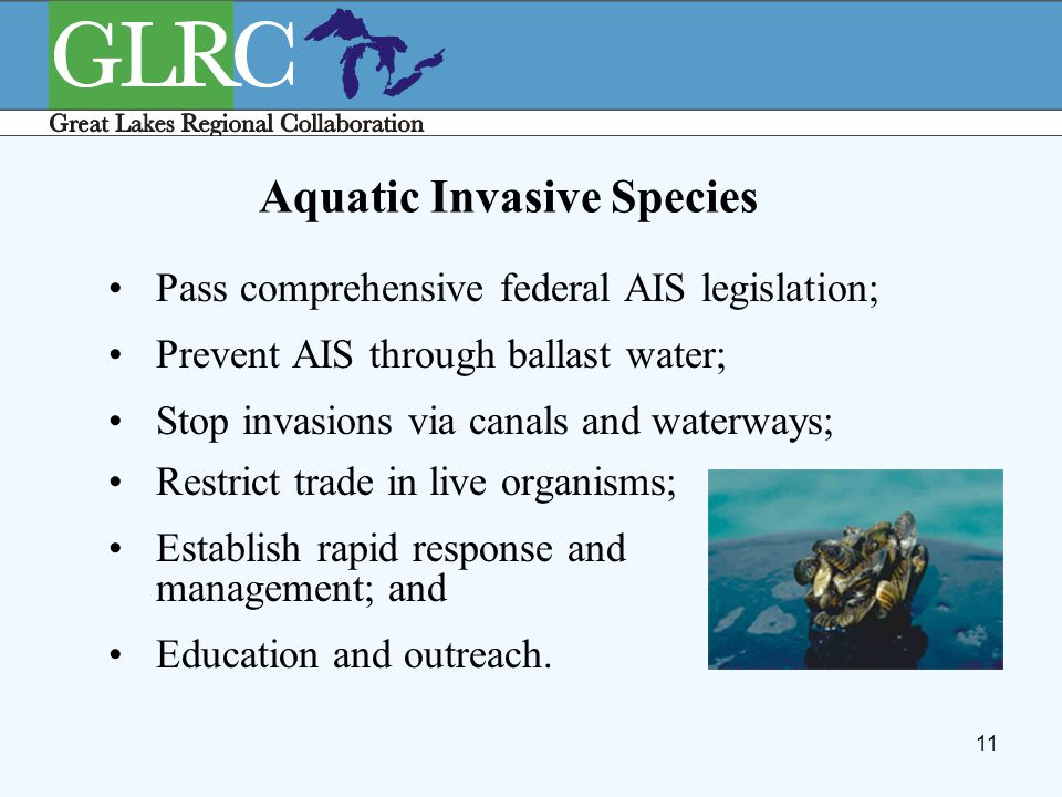 11 Aquatic Invasive Species Pass comprehensive federal AIS legislation; Prevent AIS through ballast water; Stop invasions via canals and waterways; Re