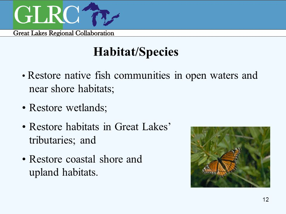 12 Habitat/Species Restore native fish communities in open waters and near shore habitats; Restore wetlands; Restore habitats in Great Lakes' tributar