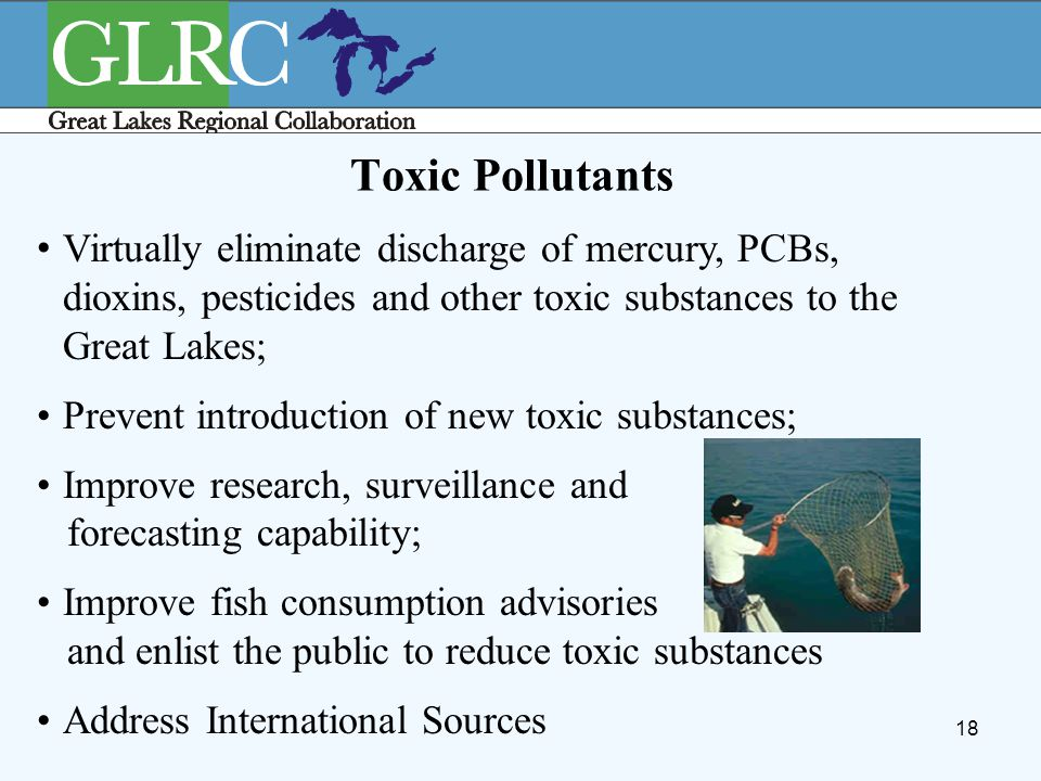18 Toxic Pollutants Virtually eliminate discharge of mercury, PCBs, dioxins, pesticides and other toxic substances to the Great Lakes; Prevent introdu