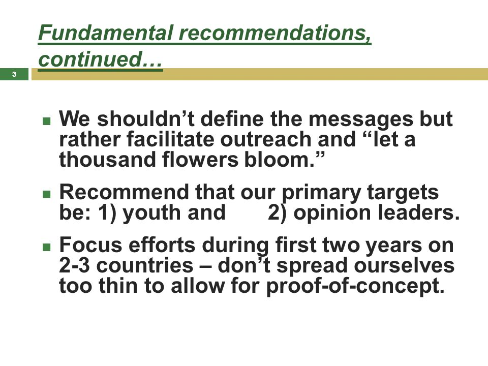 Fundamental recommendations, continued… We shouldn't define the messages but rather facilitate outreach and let a thousand flowers bloom. Recommend that our primary targets be: 1) youth and 2) opinion leaders.