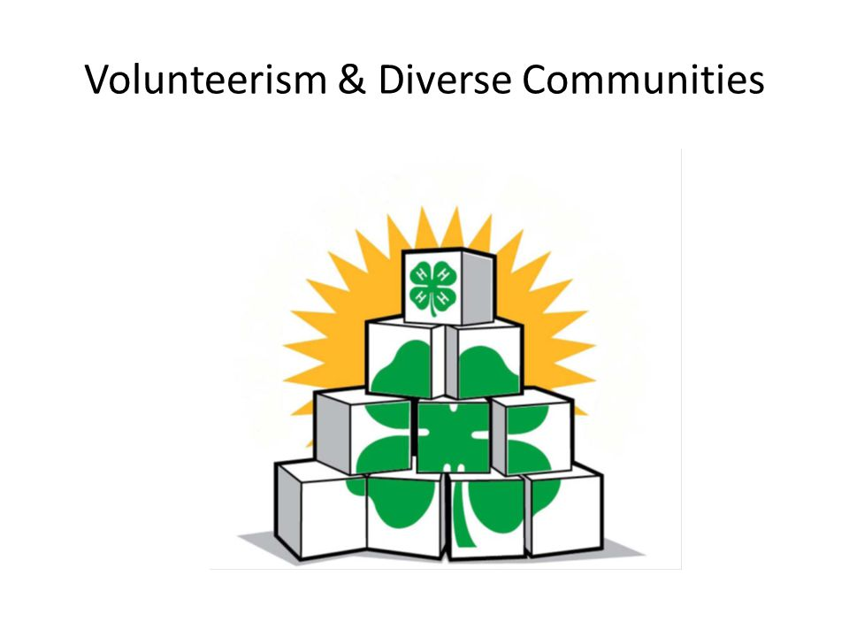 Volunteerism & Diverse Communities