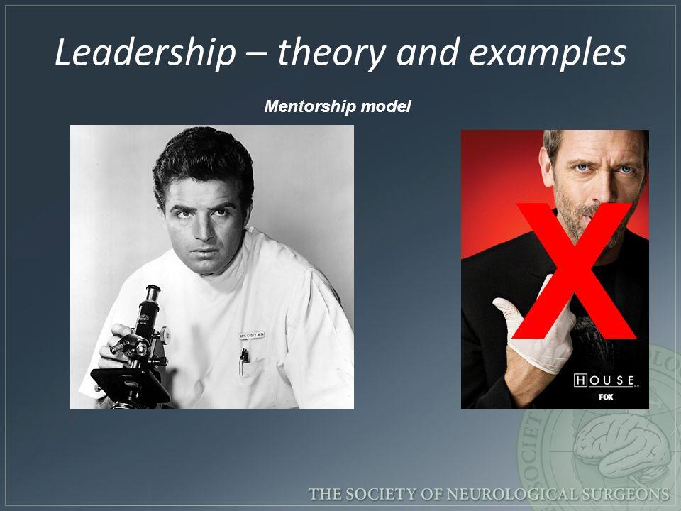X Mentorship model