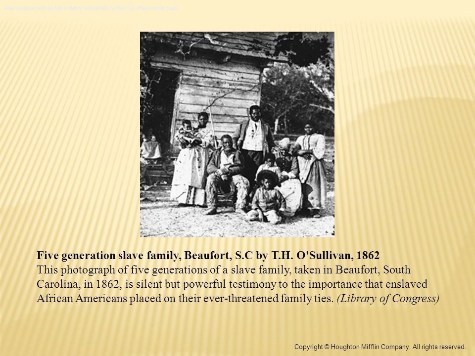 Five generation slave family, Beaufort, S.C by T.H.