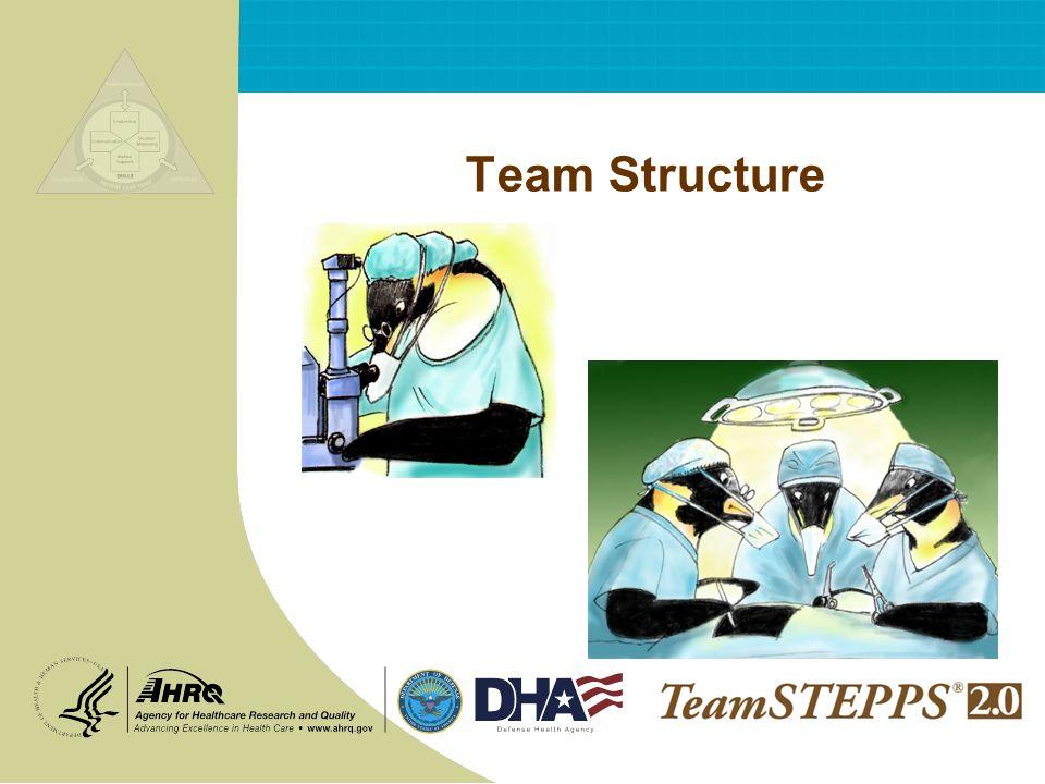 Team Structure NEXT: