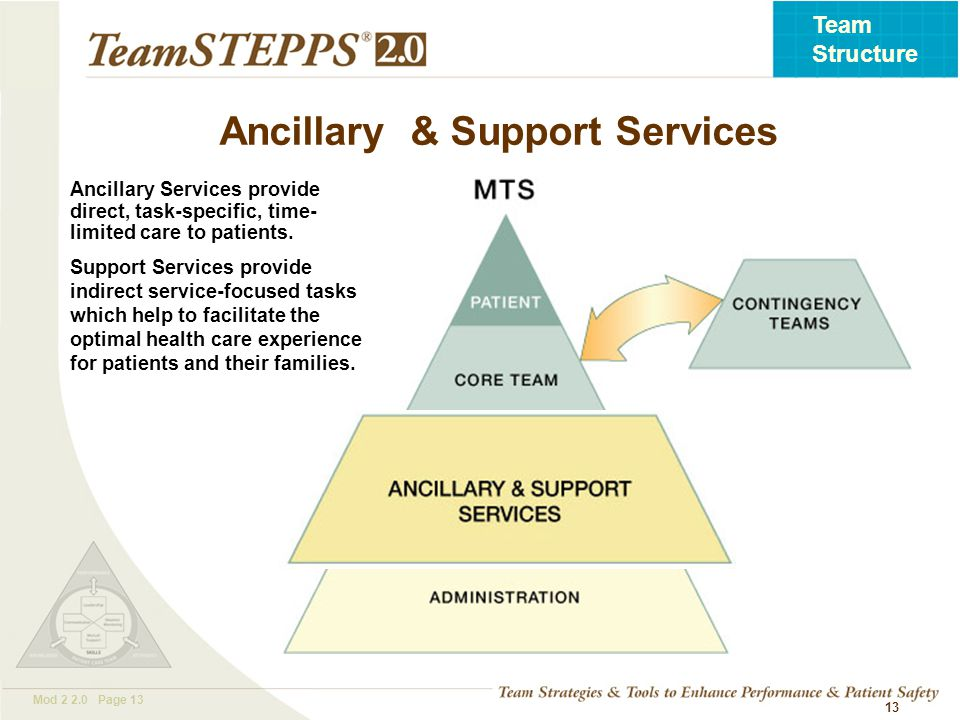 T EAM STEPPS 05.2 Mod 2 2.0 Page 13 Team Structure 13 Ancillary Services provide direct, task-specific, time- limited care to patients.
