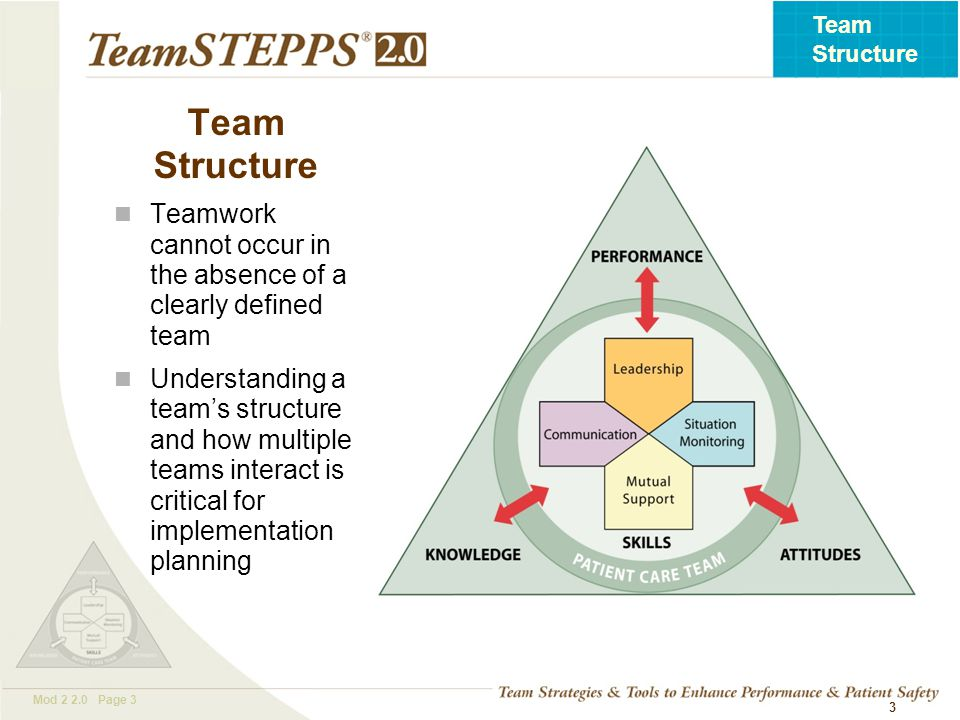 T EAM STEPPS 05.2 Mod 2 2.0 Page 4 Team Structure 4 Two or more people who interact dynamically, interdependently, and adaptively toward a common and valued goal, have specific roles or functions, and have a time-limited membership What Defines a Team?