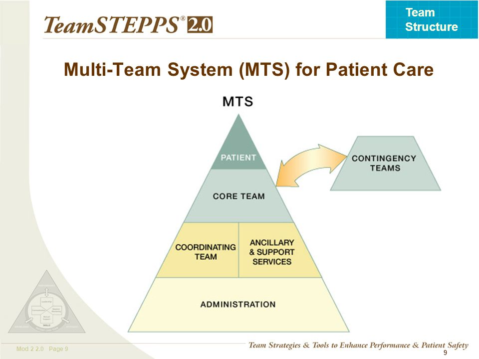 T EAM STEPPS 05.2 Mod 2 2.0 Page 10 Team Structure 10 Core Team members have the closest contact with the patient.