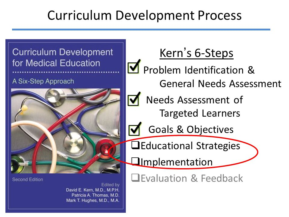 Step By Step Approach Educational Strategies Implementation Step 3: Project Management Step 2: Project Selection Step 1: Make a Plan