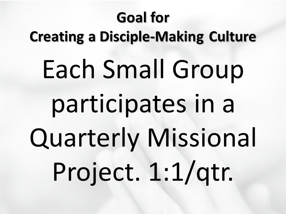 Goal for Creating a Disciple-Making Culture Each Small Group participates in a Quarterly Missional Project. 1:1/qtr.